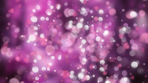Pink and purple bokeh light effects in the background Animation
