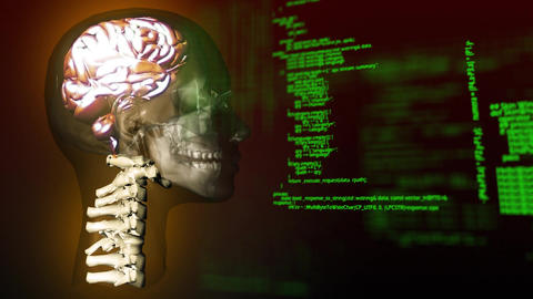 Human system and program codes Animation