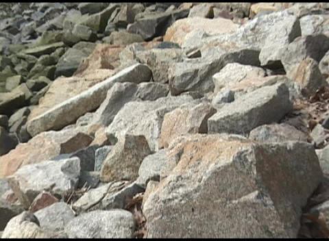 Zoom-out from shoreline stones to the Plymouth Rock Memorial Live Action