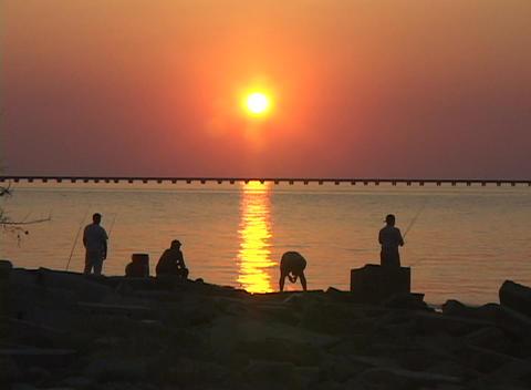 Men fish along the Gulf Coast Stock Video Footage