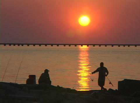 A fisherman catches a fish along the Gulf Coast Stock Video Footage