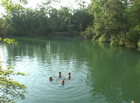 Four people swim in a lake surrounded by trees Stock Video Footage