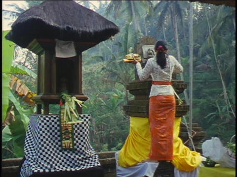 A woman makes a religious offering during a ceremony in Bali Footage
