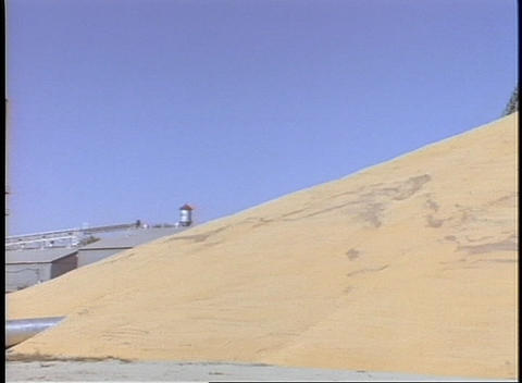 A granary sits next to a huge pyramid of wheat Stock Video Footage