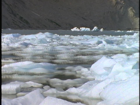people in a boat paddle through ice floes in a glacial bay Stock Video Footage