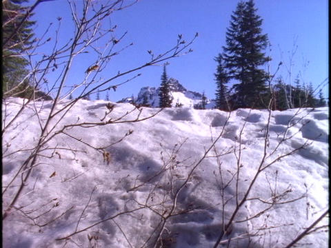 A snow-covered mountain appears beyond a snowbank Footage