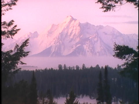 The Grand Tetons rise high above a wooded valley Footage