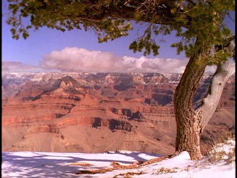 Fresh snow blankets the rim of the Grand Canyon Footage