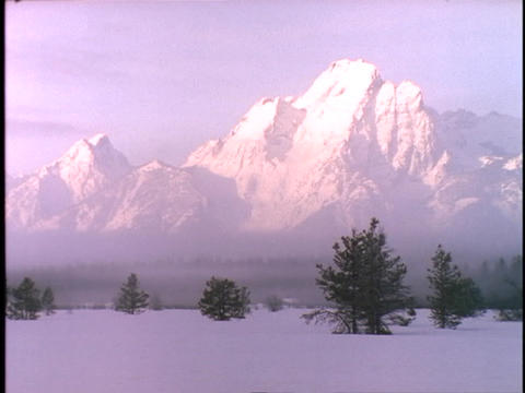 The Grand Tetons rise in the fog above a snowy meadow Footage