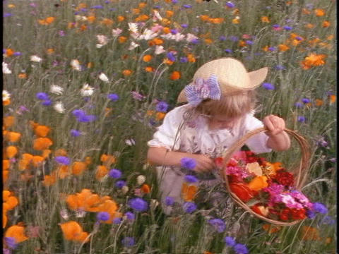 A little girl wearing a straw hat picks wildflowers in a field Live Action
