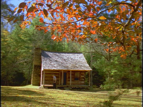 A man walks out of a log cabin and into the woods behind Footage