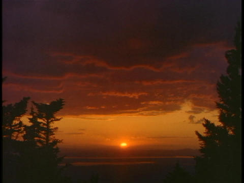 Trees frame an orange sky in the Pacific Northwest Stock Video Footage