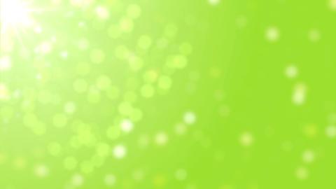Green Bokeh Loop Videos animados