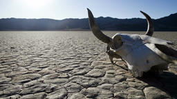 Death valley skull timelapse video Footage