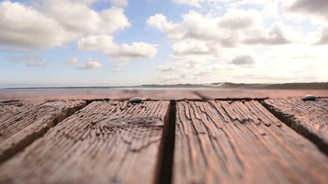 Bird flying in the sky with a view of a wooden plank Animation