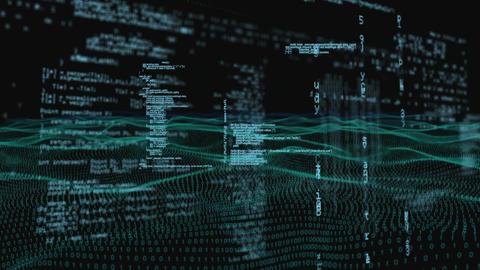 Program codes and digital fitness landscape Animation