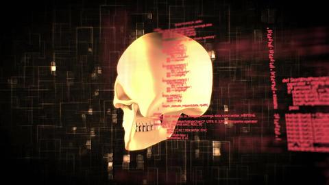 Human skull and program codes Animation