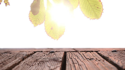 Wooden plank deck with a view of a bright light Animation