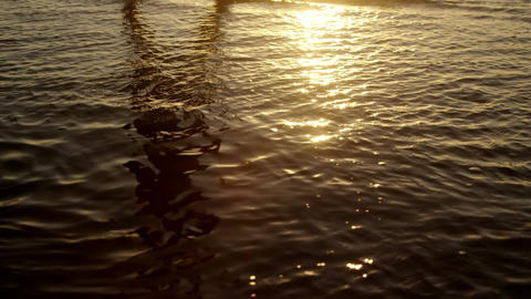 Flowing water and bokeh lights Animation