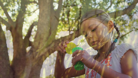 Girl blowing bubbles at a park Animation