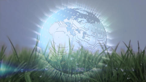 Digital animation of a globe on grass Animation