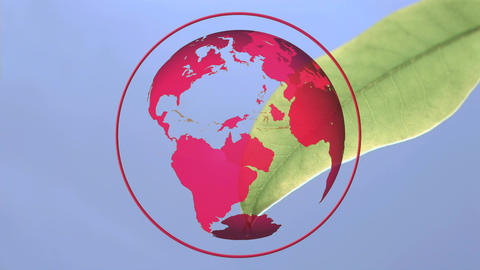 Rotating red globe Animation