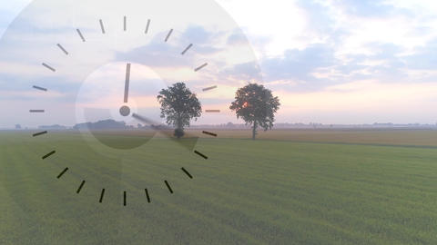 Grass field with a fast running clock Animation