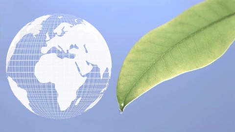 Digital animation of a rotating globe and a leaf Animation