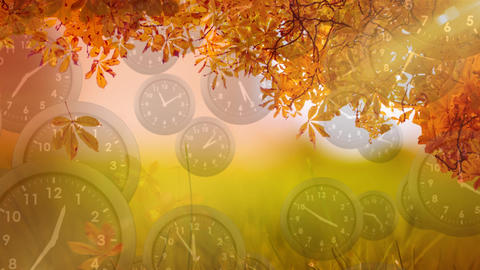 Tree leaves with clocks falling down Animation