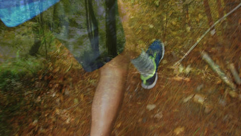 Man jogging in a forest Animation