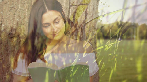 Woman reading a book under a tree Animation