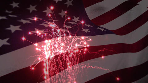 Fireworks display on independence day Animation
