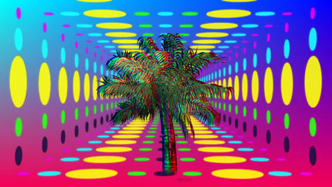 Colorful palm tree and circles Animation