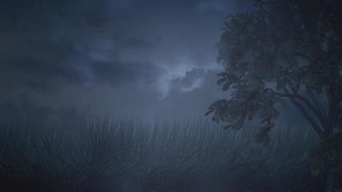 Stormy night with trees swaying Animation