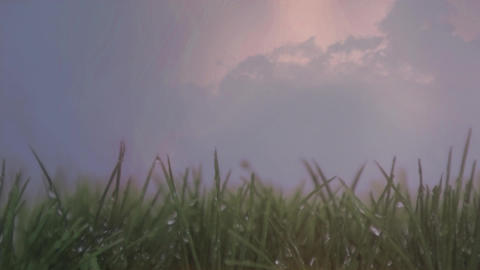 We grass and the sky with clouds and lightning Animation