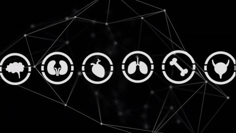Different icons of organs in circles and asymmetrical lines Animation