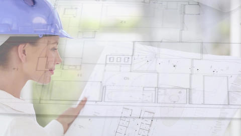 Architect looking at plans Animation