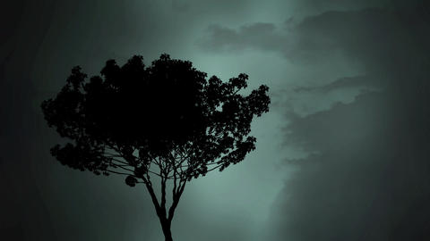 Silhouette of a tree and lightning Animation
