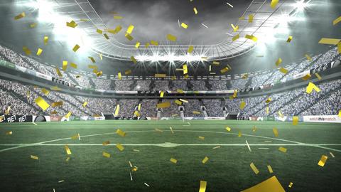 Field stadium with confetti Animation