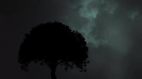 Silhouette of a tree Animation