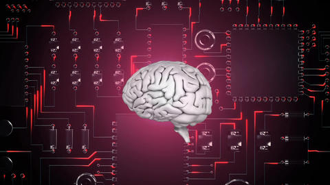 Brain and digital circuit Animation