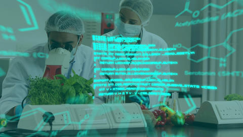 Scientists at work in a lab using microscope with glowing greem text and data Animation