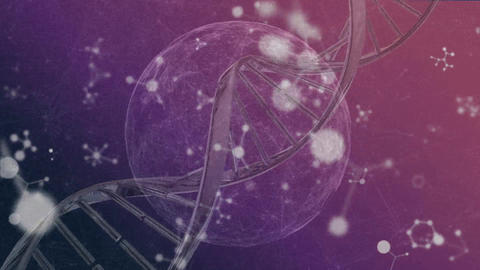 DNA, cell and molecular structures moving on pink and purple background Animation