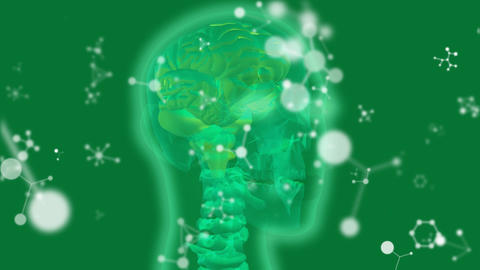Glowing green human head x-ray with molecular structures on green Animation