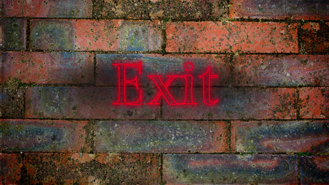 Exit red neon on brick wall Animation