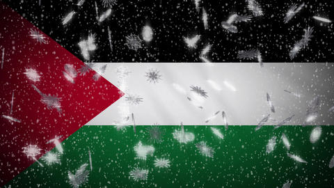 Palestine flag falling snow loopable, New Year and Christmas background, loop Animation