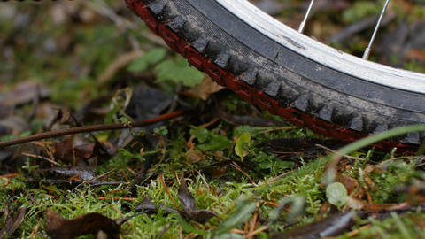 bicycle wheel on grass low angle view Live Action