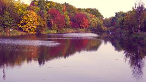 Colorful autumn view on pond or lake with beauty nature Live Action