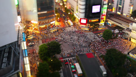 Shibuya Crossing In Tokyo Japan Live Action