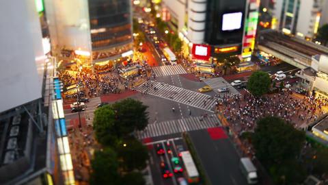 Shibuya Crossing In Tokyo Japan Stock Video Footage